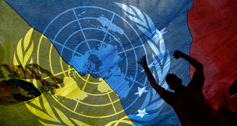 UN Human Rights Rapporteur's alarming findings on the effects of sanctions against Venezuela