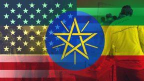 The Ethiopian Elections