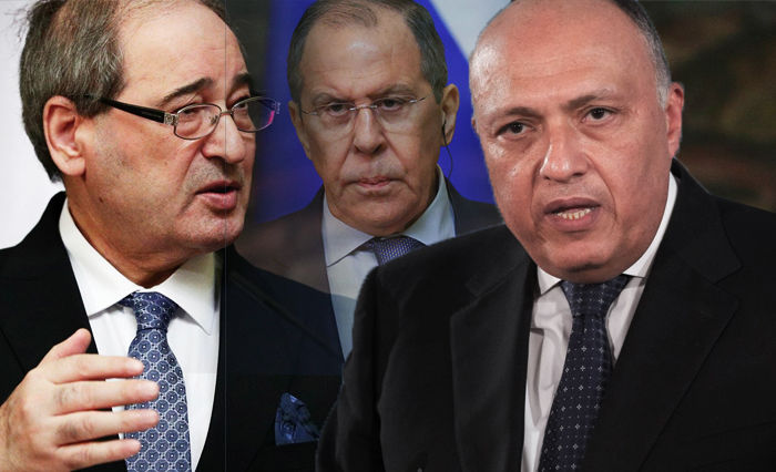 The Shukry-Al-Miqdad meeting: The opening scene for a more effective role of Egypt in Syria
